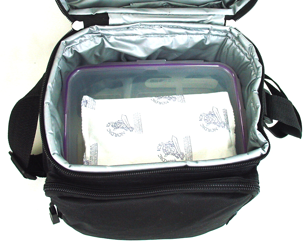everest insulated lunch tote cooler bag with bento box ice pack ebay. Black Bedroom Furniture Sets. Home Design Ideas