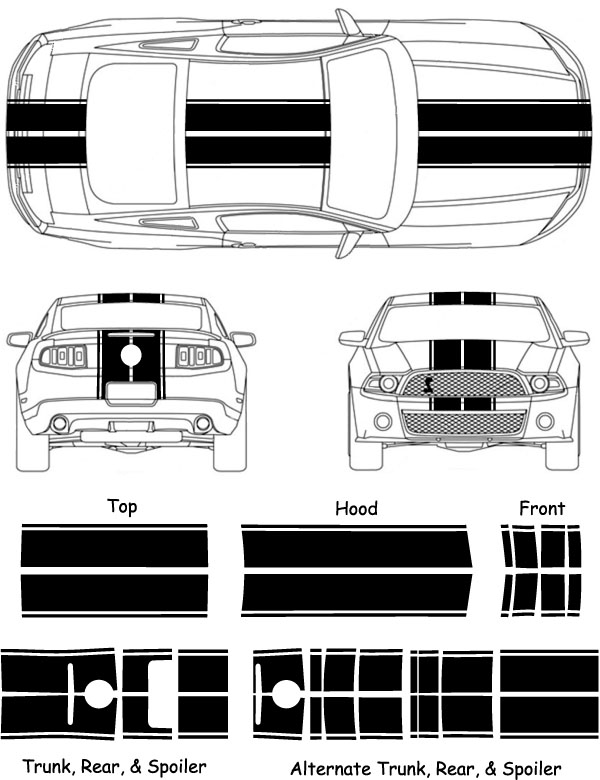 2010-12 Mustang Eleanor Rally Racing Stripes 2010 2011 ...