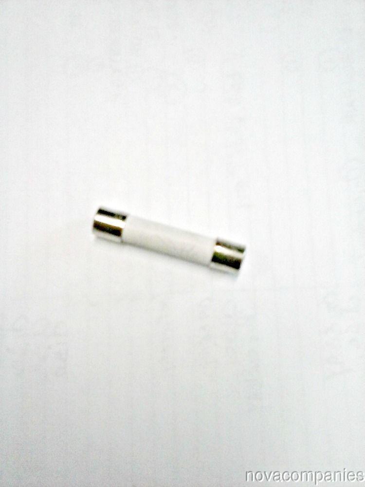 """20 amp fuse ABE ceramic 1/4"""" x 1.25"""""""