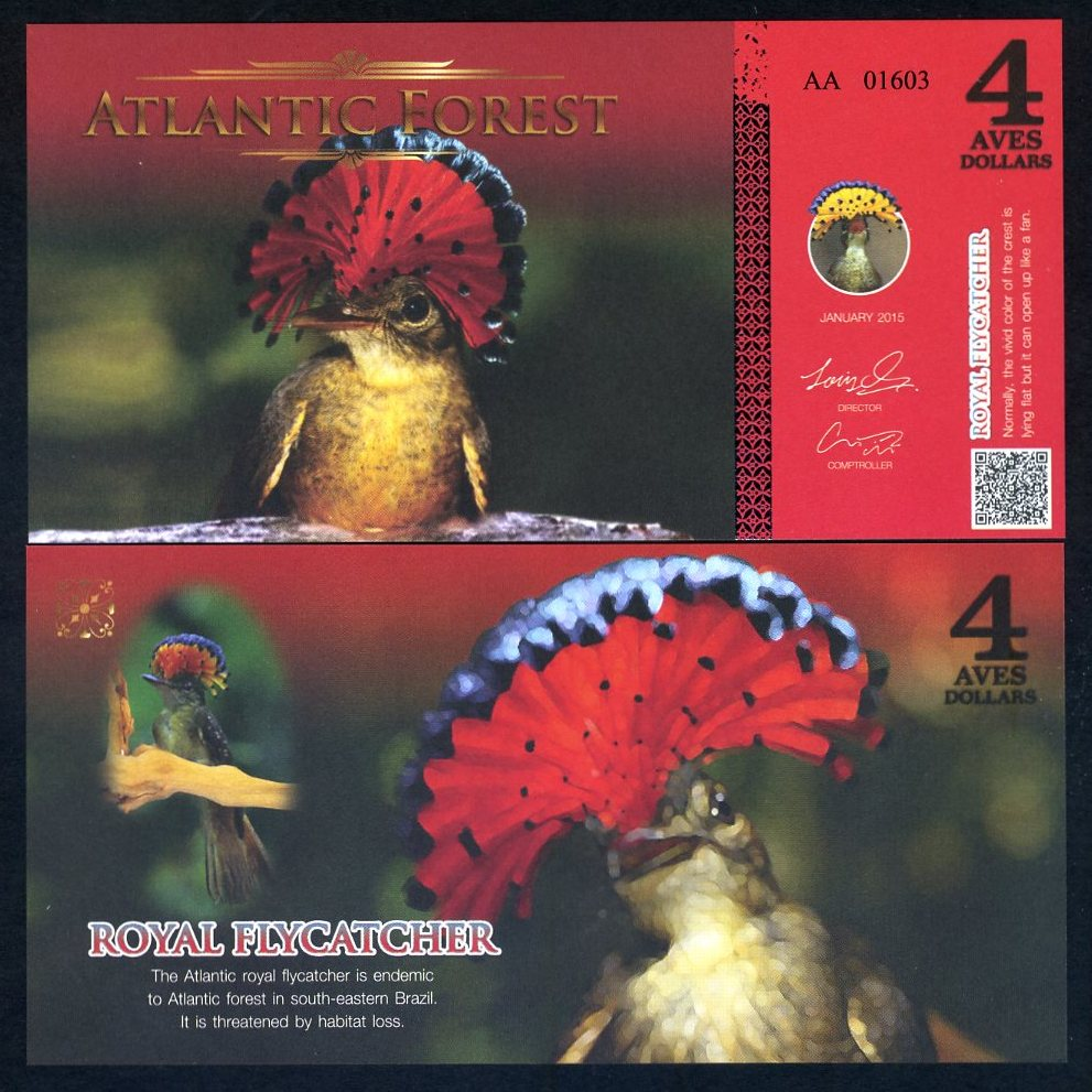 Royal Flycatcher Atlantic Forest 4 Aves Dollars 2015 Birds