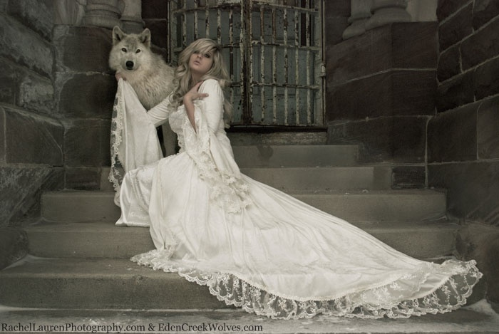 Victoria lace and velvet medieval gown new style for Velvet and lace wedding dresses