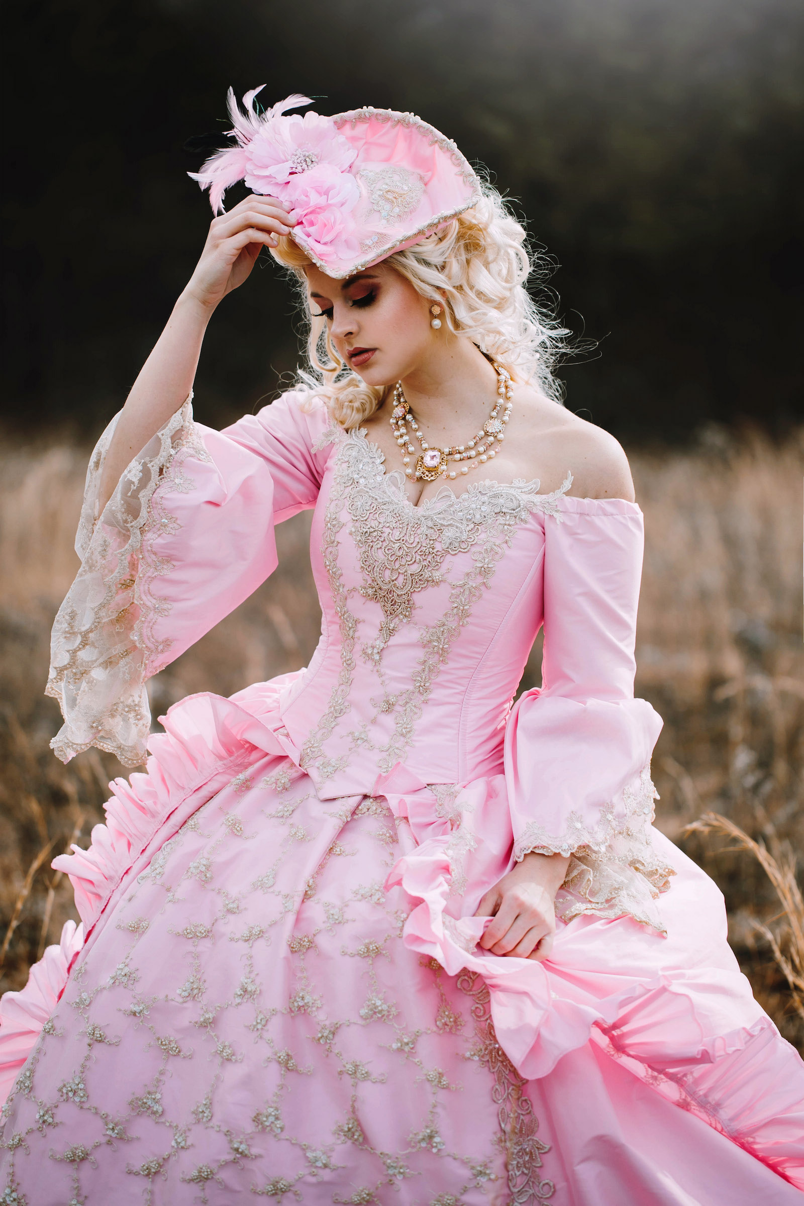 Medieval Wedding Gowns, Marie Antoinette Gowns, Gothic Wedding Gowns ...