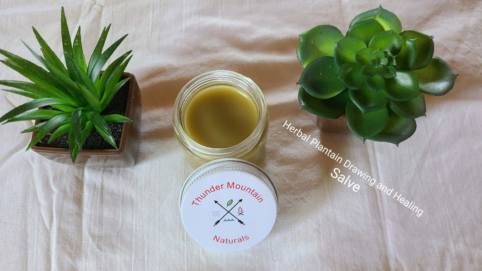 Herbal Plantain Drawing and Healing Salve