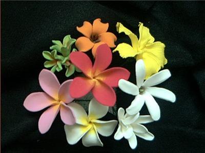hawaiian flower. Picks: 8 Hawaiian Flowers