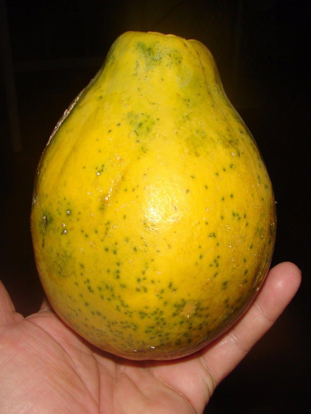Polynesian Produce Stand Gmo Rainbow Papaya Ring Spot