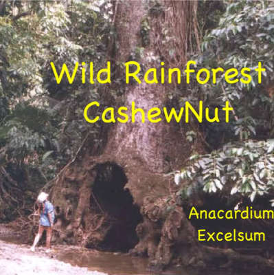 theories of cashew tree product In this month's podcast we travel to southern india to follow the cashew nut from tree to  global development podcast transcript: the truth  premium product.