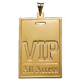 vip all access pass pdf