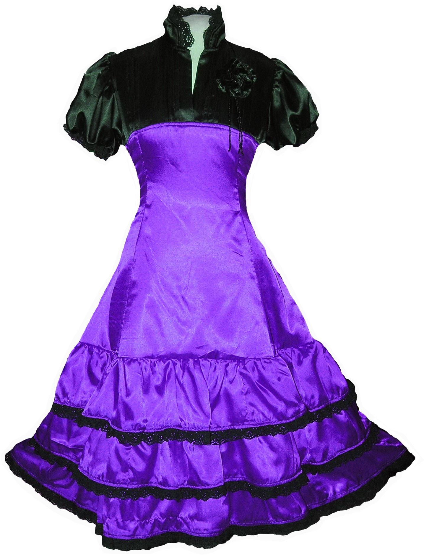 Purple Lolitta Gothic Steampunk Queen Dress Party 60s 70s