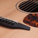 Furch 20 Series Cedar Top Acoustic Guitar