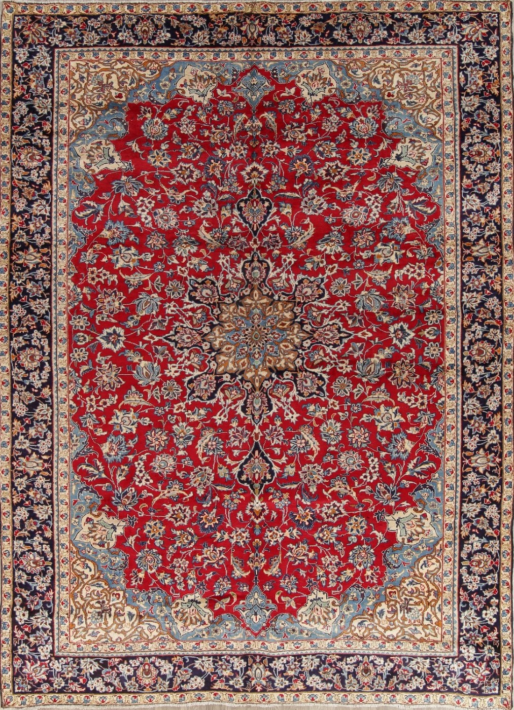 Vintage Traditional Floral Red 10x13 Najafabad Persian Oriental Area Rug Rugs & Carpets