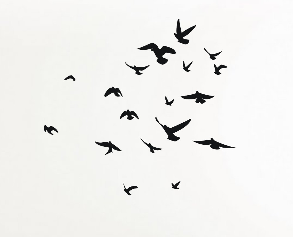 Flock Of Doves Drawing...