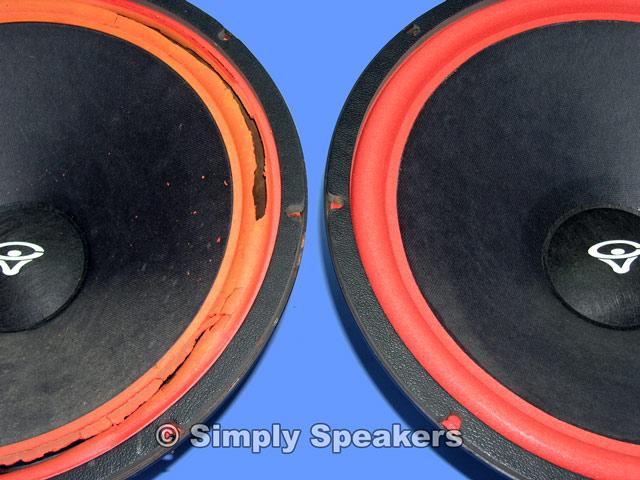 CERWIN VEGA SPEAKER D9 15 Woofer Foam Edge Replacement