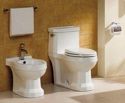 Bidet Modern Kohler Toilet Seat Sprayer Toto Electric Shower Sink ...