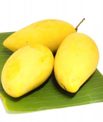 Bargain African Mango Kokemuksia On Line