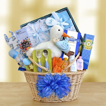 Gifts Baby  on Gift Baskets Created   New Baby Boy Gift Basket Deluxe