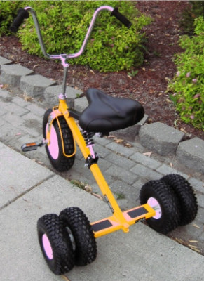bhigs101 : GIANT ADULT TRICYCLE