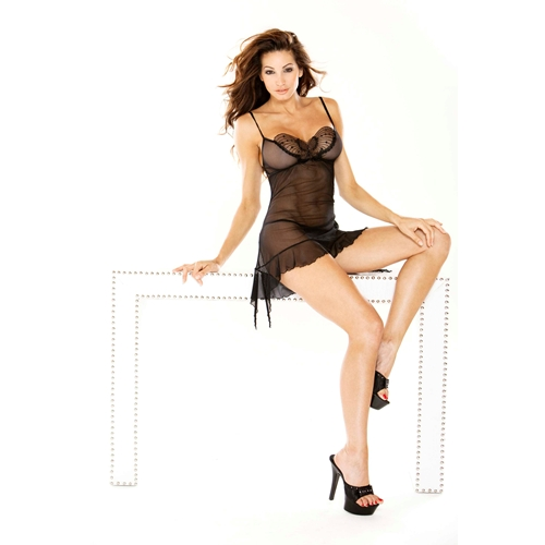 Fantasy Mesh Chemise W Sequined Butterfly Applique & G string Colors