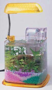Deco Art Aqua Vase CANDY COMBO XL KIT PPP