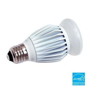 ecosmart 13 watt 60w a19 led light bulb e avi depot much more. Black Bedroom Furniture Sets. Home Design Ideas