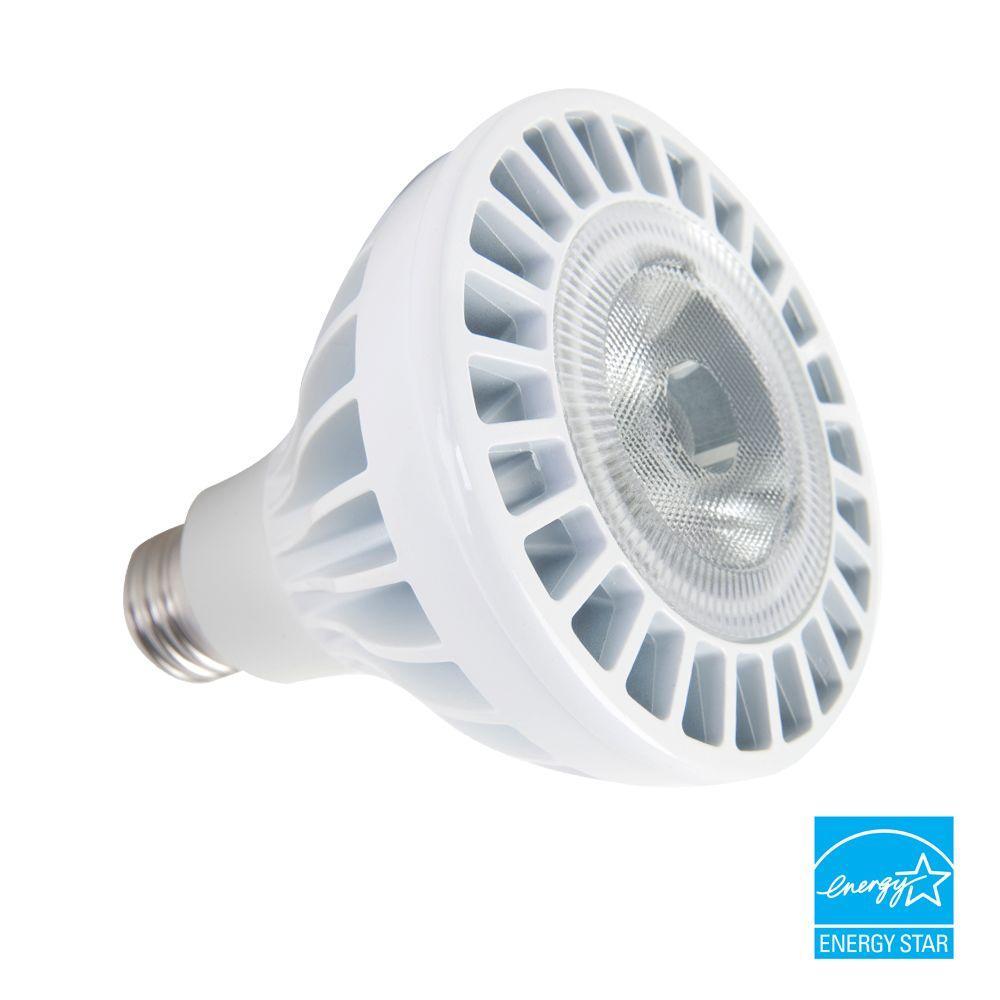 EcoSmart ECS 30 CW FL 120 15-Watt (90W) PAR30 Daylight LED ...