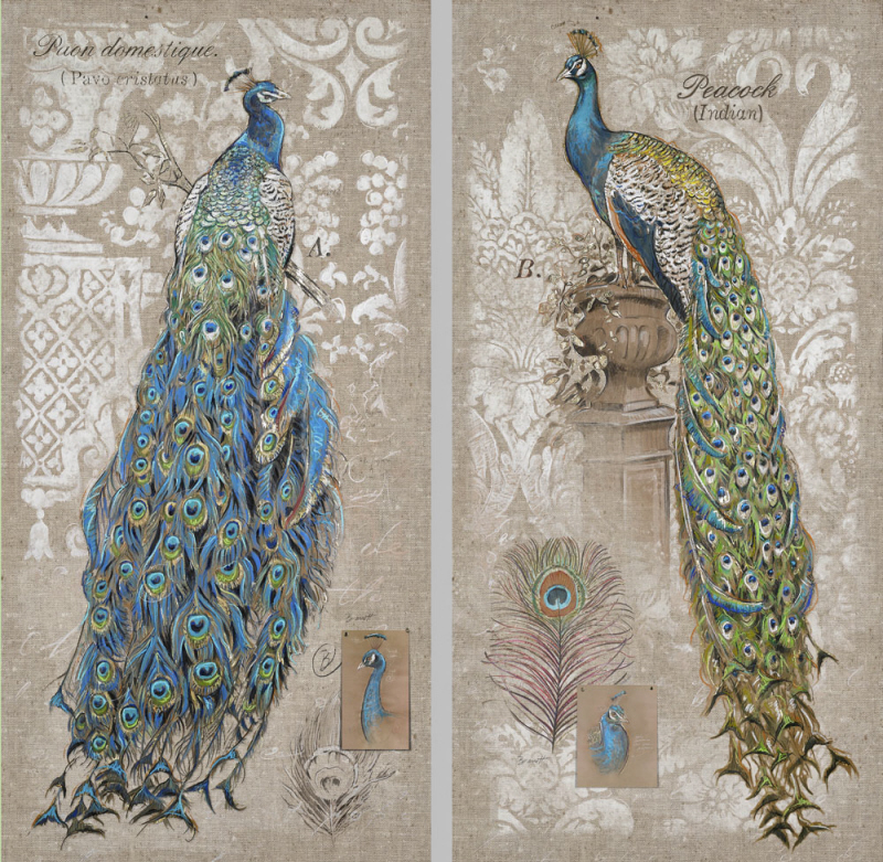 New Elegant Peacock Canvas Wall Print 18x36 Bird Sofa Art