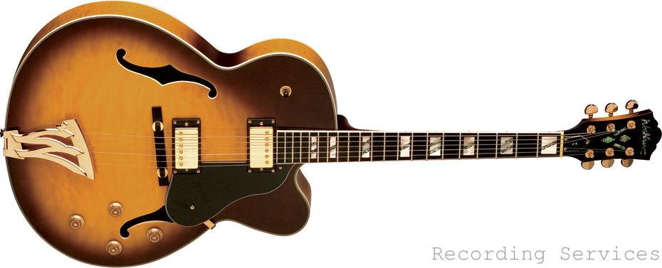 Washburn J5TSK Big Box Hollowbody Jazz Guitar with