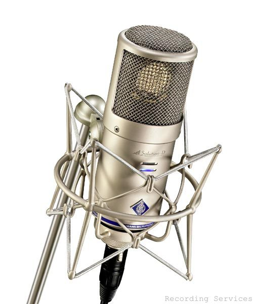 Neumann D-01  Large Diaphragm Digital Mic