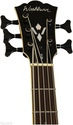 Washburn AB45VSK Cutaway Acoustic 5 String Bass -