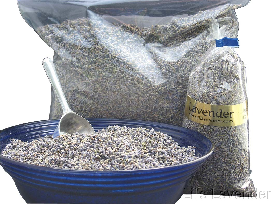 One Pound of Lavender Bud!