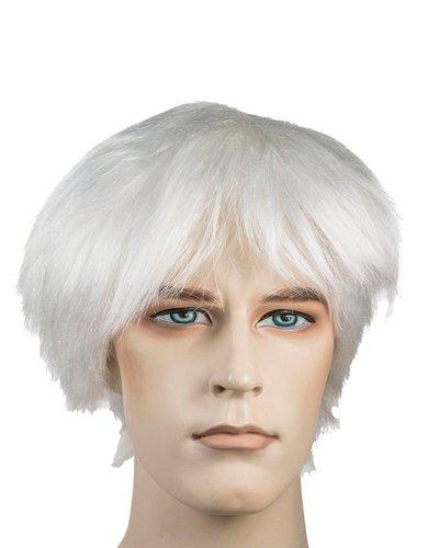 Andy Warhol Wigs 56