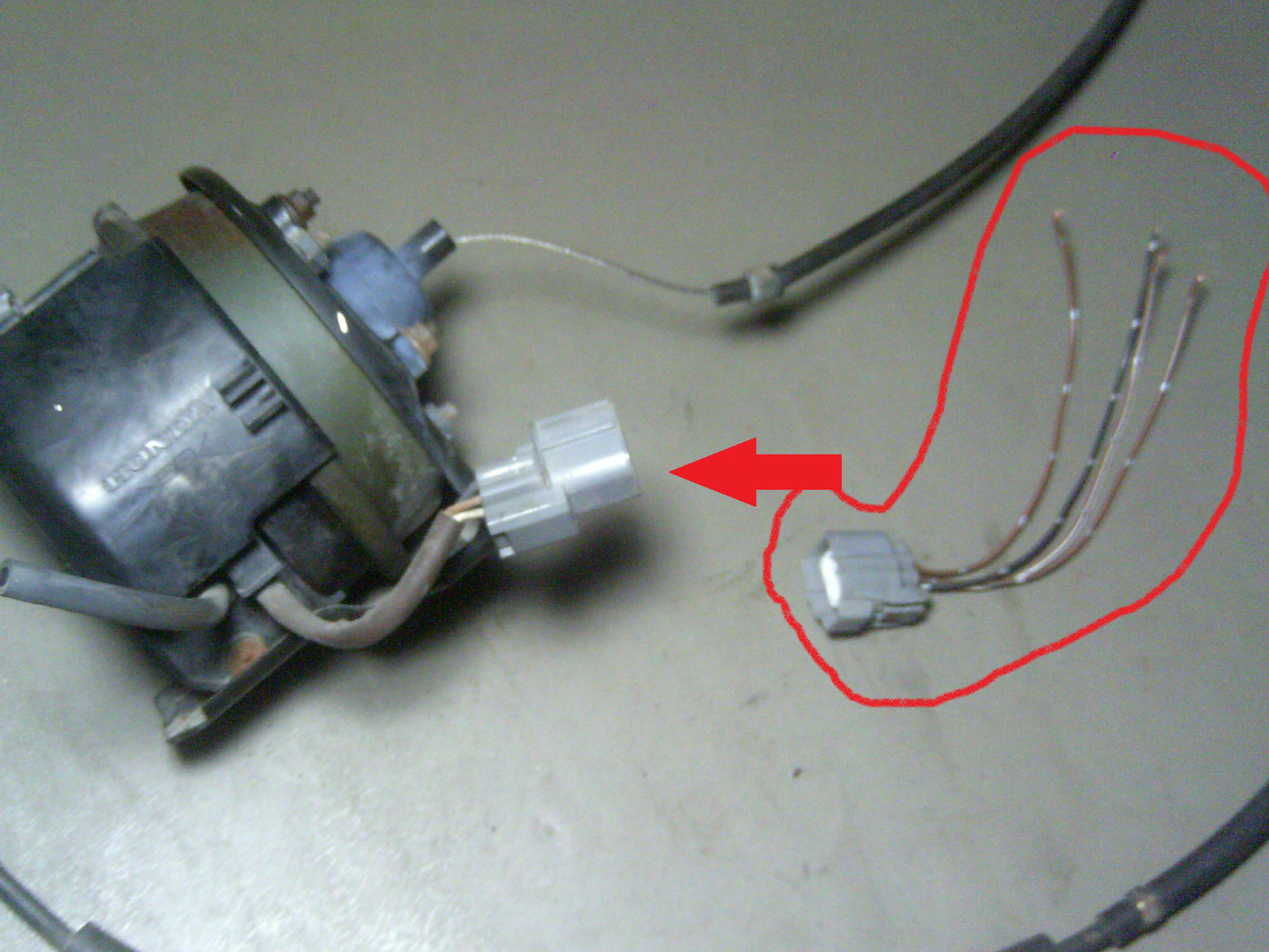 98 Honda Accord Ex 4 Door 30l Cruise Control Unit Pigtail Wires Wiring From A 1998 V6 At