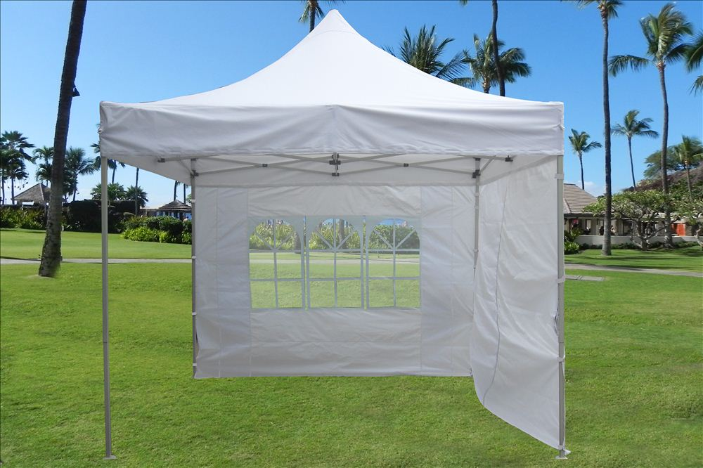 10 X10 Enclosed Pop Up Canopy Party Folding Tent Gazebo