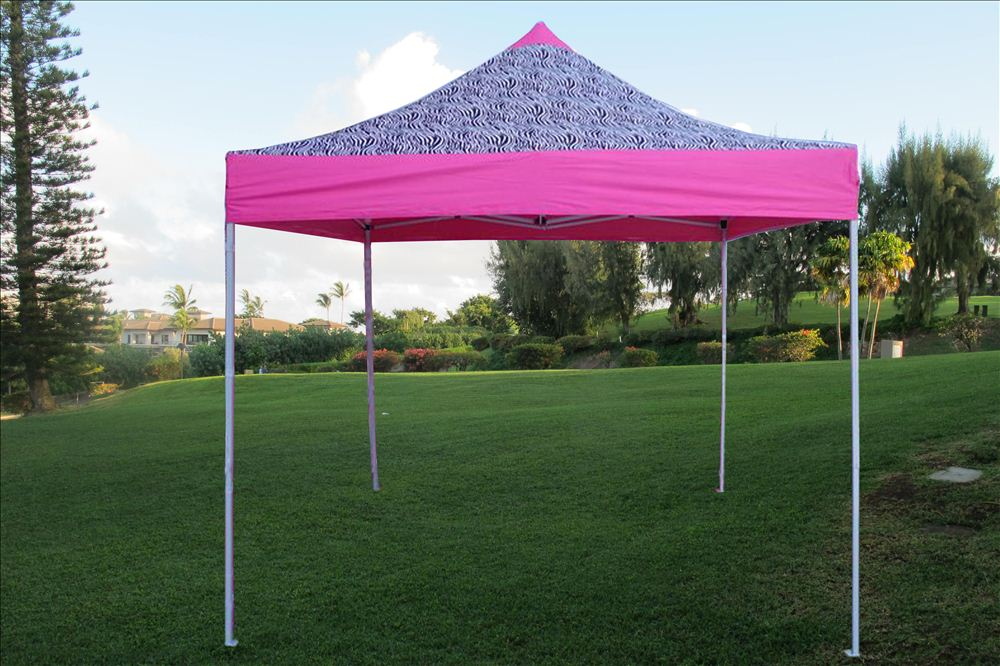 10u0027 x 10u0027 Pop Up Tent - Pink Zebra - E Model. main image & 10u0027 x 10u0027 Pop Up Canopy Party Tent Gazebo EZ - Pink Zebra - E ...