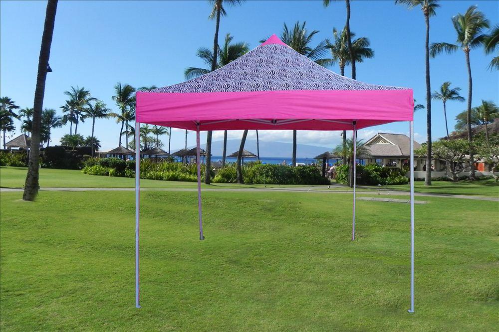 10u0027 x 10u0027 Pop Up Canopy Party Tent - Zebra Pink - E Model & 10u0027x10u0027 Enclosed Pop Up Canopy Party Folding Tent Gazebo - Pink ...