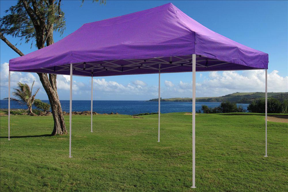 Ez Up Canopy 10x20 >> SALE $$$ 10' x 20' Pop Up Canopy Wedding Tent Gazebo EZ - Purple - E Model | eBay