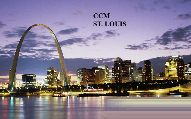 St Louis Money Manager,St Louis Financial Advisor, St Louis Financial Planner