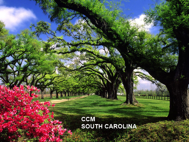 South Carolina Money Manager, South Carolina Financial Advisor, South Carolina Financial Planner