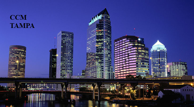 Tampa Money Manager, Tampa Financial Advisor, Tampa Financial Planner