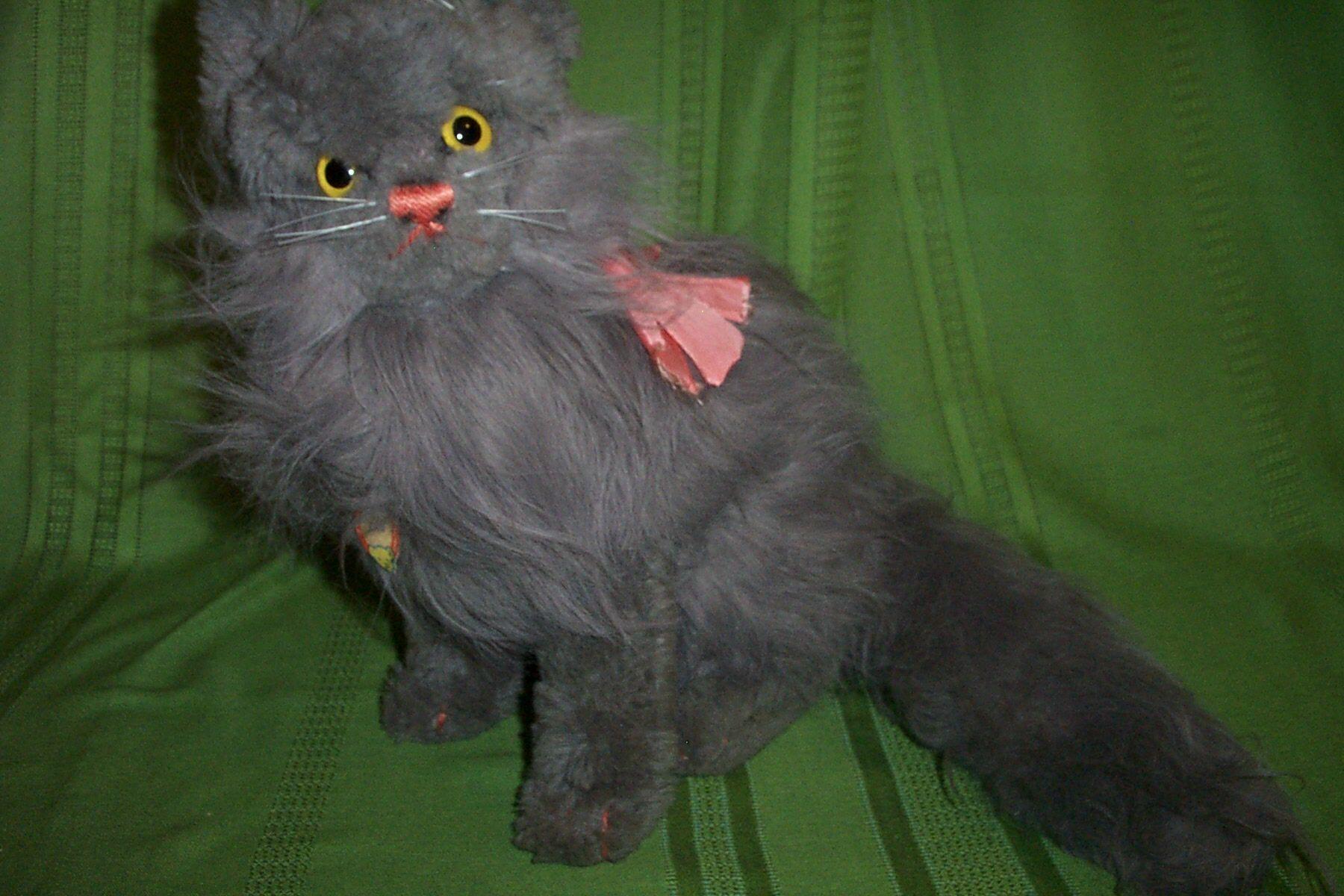 Robinsglen2 13 Quot Steiff Diva Cat Nice