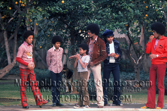 MICHAEL JACKSON  AGE11 with BROTHERS (3) RARE 8x10 PHOTOS