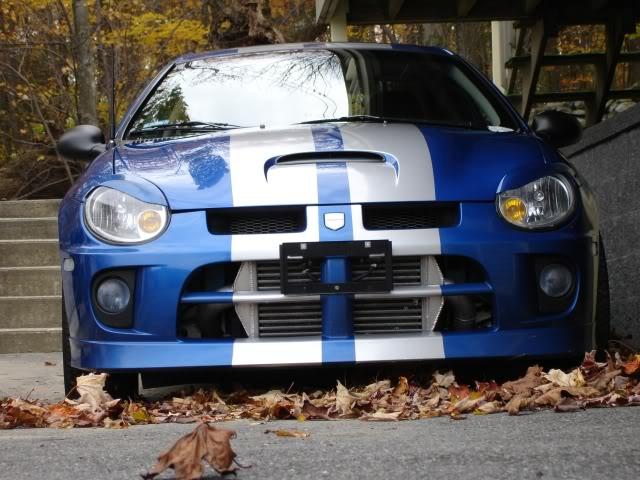 House Of Grafx Dodge Srt 4 Racing Rally Stripe Vinyl