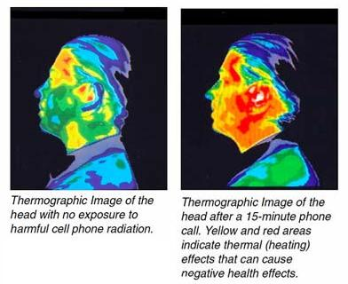 harmful of emf