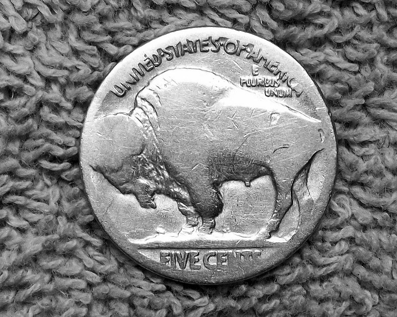 Buffalo nickel no date in Melbourne