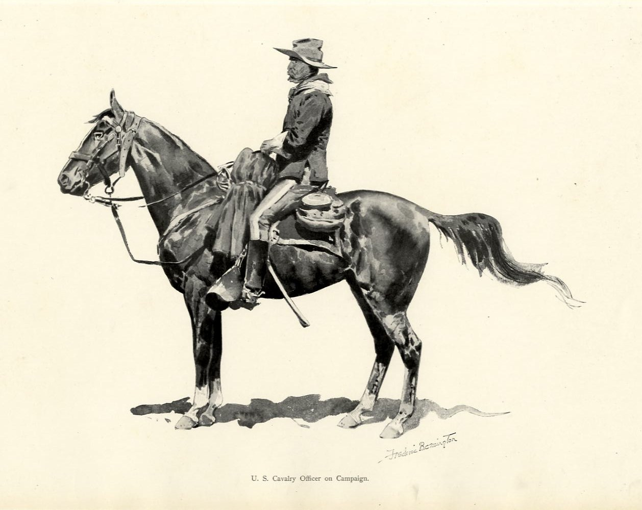 Horse reins images