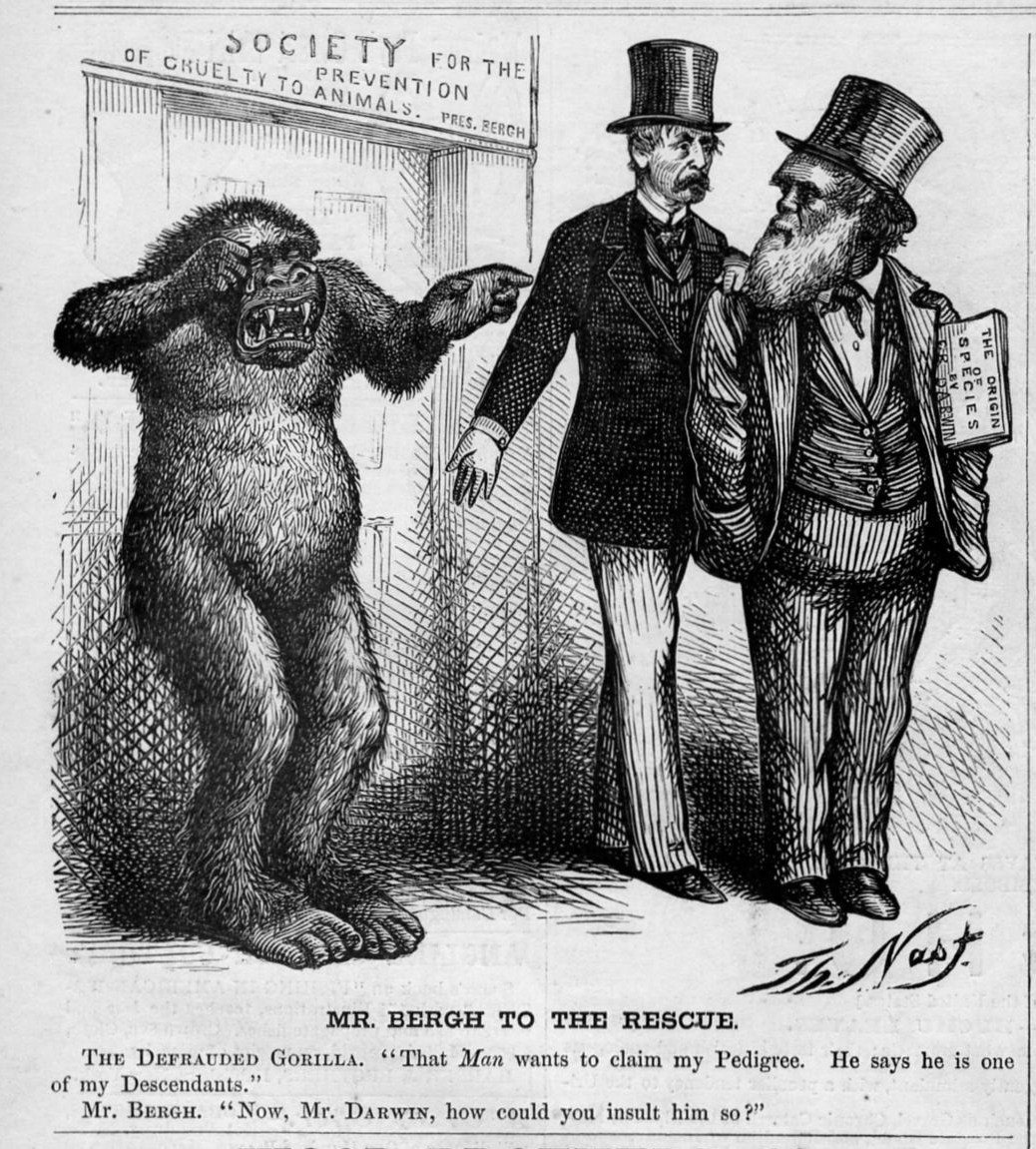 charles darwin and the evolutionary theory 10072017 before charles darwin and his groundbreaking theory of evolution , primates were mainly used as caricatures of human.