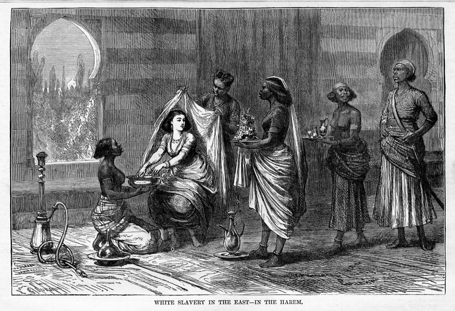sufferings of a female slave But in spite of all type of sufferings she resisted and out witted all efforts and schemes of her dirty master  incidents in the life of a slave girl written by.